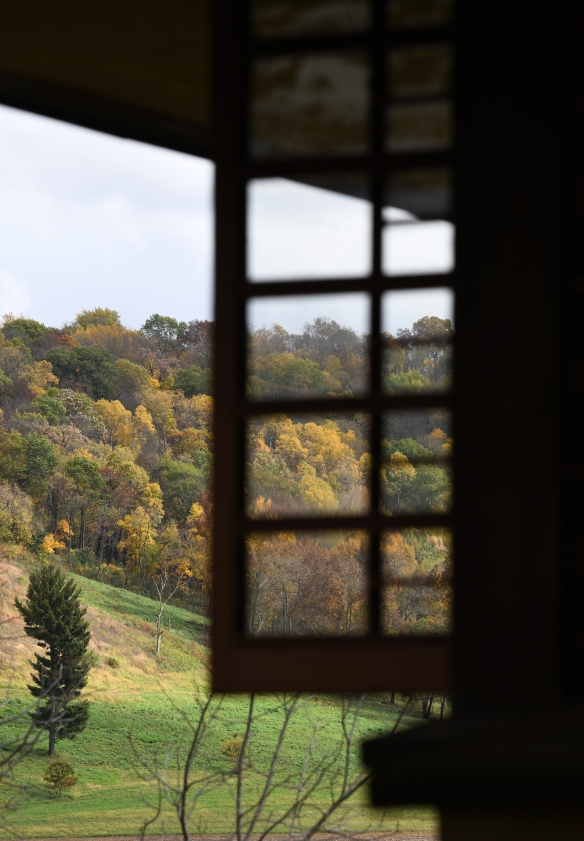 Taliesin Fall 2.jpg