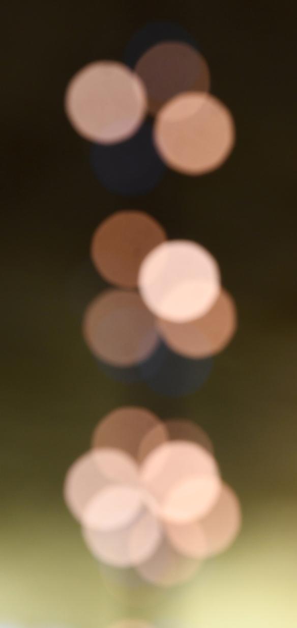 AGOC Lights 2019 004.jpg